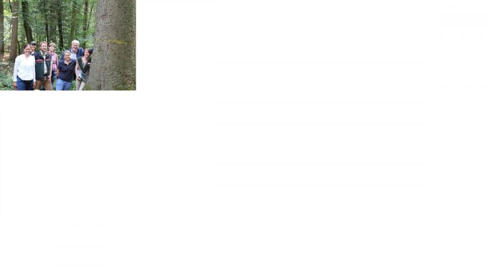 Die stärkste Weisstanne im Ammerland zeigt, dass die Tanne als Mischbaumart und Ersatz für die Fichte eine wichtige Rolle spielen kann. V.li. Ilka Studnik, Andreas van Hooven, Marcus Hoffmann, Kirsten Schnörwangen, Tanja Pohl, Stephan Albani und Sabine Ma